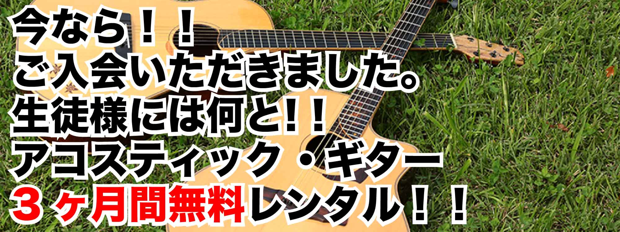 今ならご入会の方にのみ!!アコースティック・ギター 3ヶ月無料レンタル(feelギター教室 西東京市田無校)